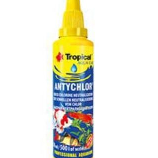 Tropical Antychlor